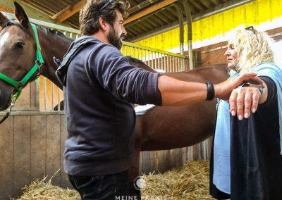 MeinePraxisKiel_Emotionslösung-für-Pferde-27